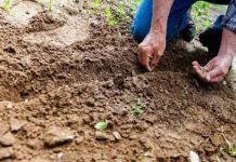 Es necesario garantizar la articulación del combate a la degradación del suelo